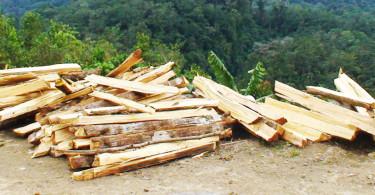 Mexico wood-burning stove