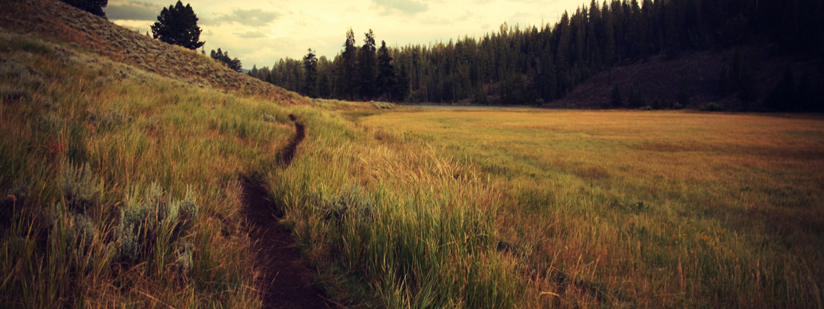 Finding True North: Break Down Before You Break Out