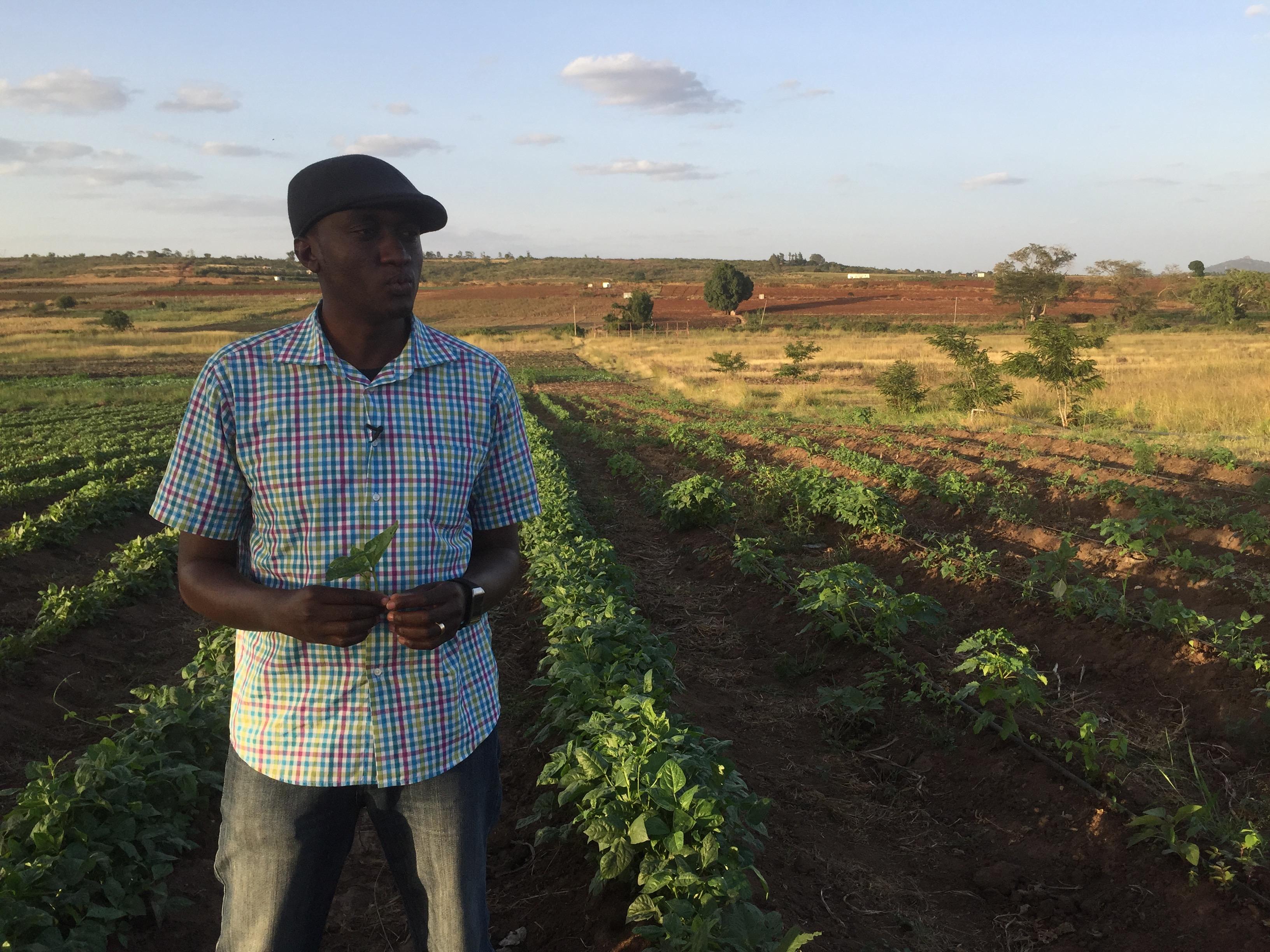 A smallholder farmer who Ojay Greene works with in Kenya