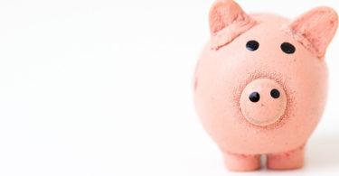 don't raise VC money