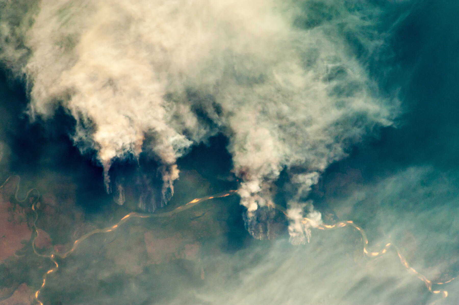 Deforestation of Cerrado